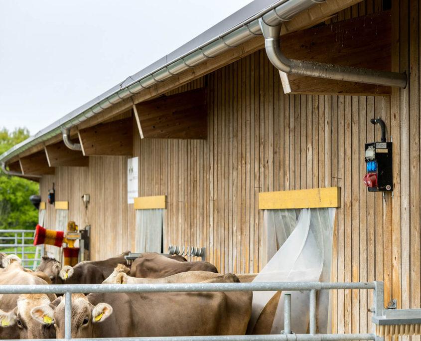 Bauernhof (3)